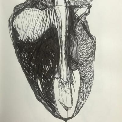 Capsule, Ink Drawing, 11 x 8.5