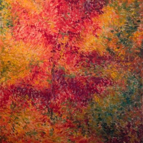 Festival of Colors, Soft Pastel, 25.5 x 19.5