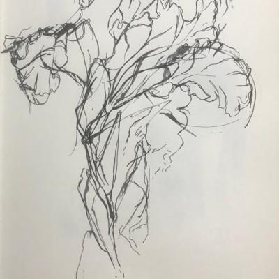 Posing, Ink Drawing, 11 x 8.5